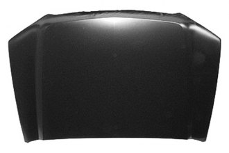 Replace® GM1230272V - Hood Panel