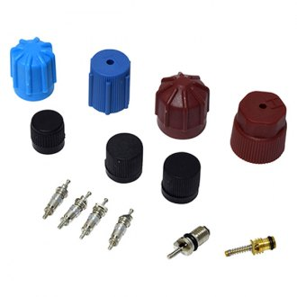Replace® - A/C System Valve Core and Cap Kit