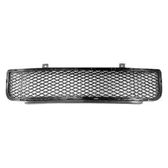 Replace® - Lower Center Bumper Grille