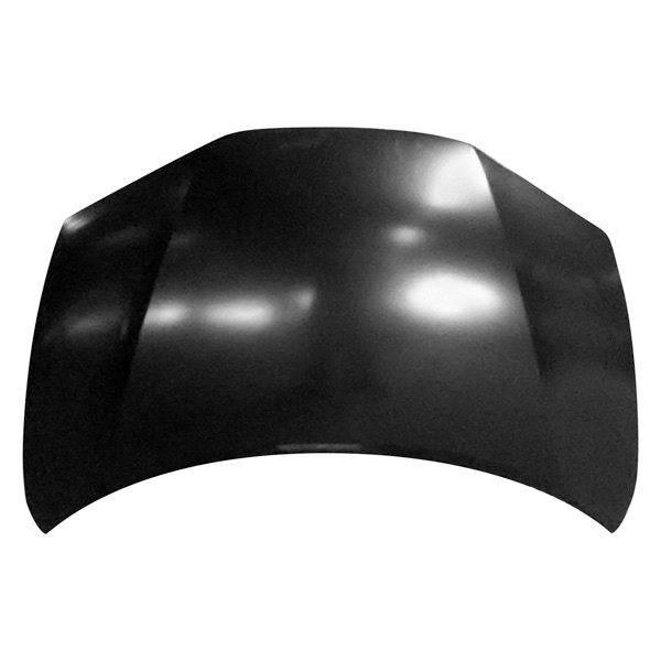 Replace® HO1230176 - Hood Panel