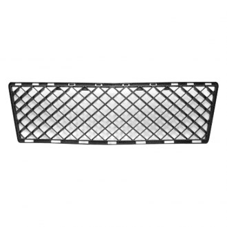 Replace® - Center Lower Bumper Grille