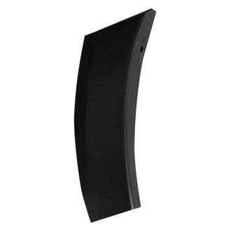 Replace® - Rear Quarter Panel Molding