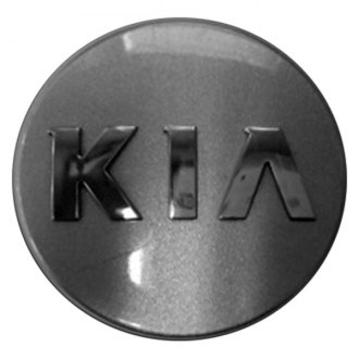 Replace® - Remanufactured Sparkle Silver Wheel Center Cap With KIA Logo