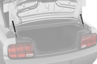 RhinoPac® - StrongArm™ Trunk Lid Lift Support