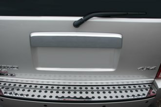 RI® - Chrome ABS Rear Door Molding Cover