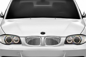 RI® - Grille with Chrome Frame, Chrome-Silver Fence