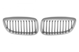 RI® - Chrome with Silver Grille