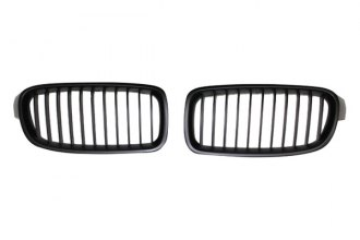 RI® - Factory Style Black Mesh Grille