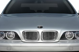 RI® - Chrome with Silver Replacement Grille