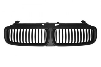 RI® - Black Grille Replacement