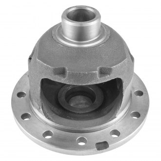 Richmond® - Excel™ Rear Differential Carrier