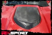 RKSport® - Extractor Hood with Carbon Fiber Center