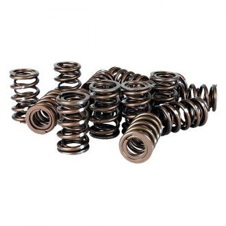 Skunk2® - Pro Series™ XP Valve Springs