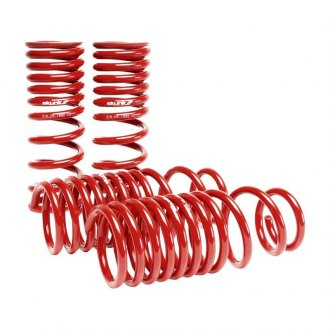 Skunk2® - Front and Rear Lowering Coil Spring Kit