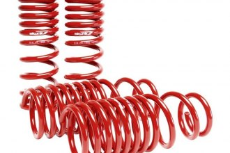 Skunk2® 519-05-1650 - Lowering Spring Kit