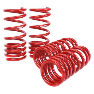 Skunk2® - Lowering Spring Kit