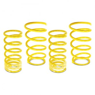 Image may not reflect your exact vehicle! ST Suspensions® - Coil Spring Kit