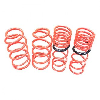 "Tanabe® - 1"" x 1.1"" NF210 Series Front and Rear Lowering Coil Spring Kit"
