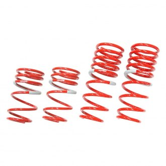 "Tanabe® - 1.3"" x 1.3"" GF210 Series Front and Rear Lowering Coil Spring Kit"