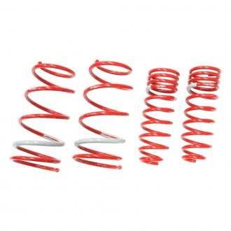 "Tanabe® - 1.1"" x 0.8"" NF210 Series Front and Rear Lowering Coil Springs"