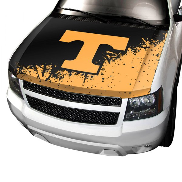ProMark NCAA Auto Hood Cover