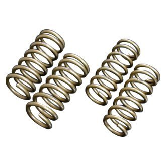"Tein® - 1.2"" x 0.8"" H-Tech Front and Rear Lowering Coil Springs"