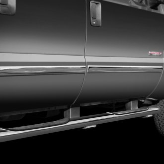 TFP® - Polished Body Side Moldings
