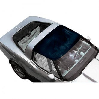 Thompson Astro Tops® - Astro 1™ Transparent Roof Panel