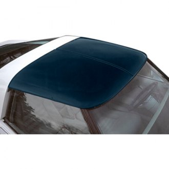 Thompson Astro Tops® - Astrotop™ Transparent Roof Panel
