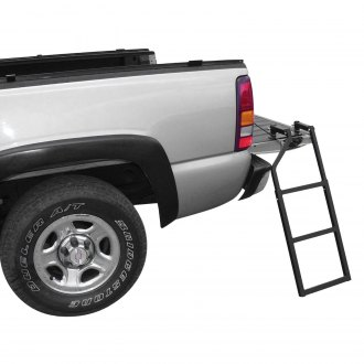TraXion® - Truck Access Ladder
