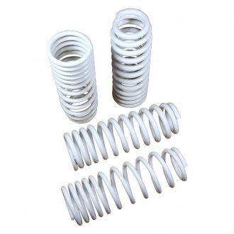 TruHart® - Lowering Spring Kit