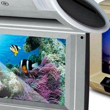 Tview® - Flip Down Monitor with Buin-In DVD Player
