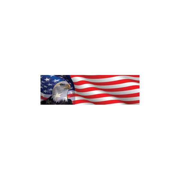 american flag eagle graphic - photo #42