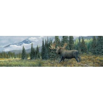 "VantagePoint® - ""Along The Upper Yukon"" Rear Window Graphic, 66"" x 20"""