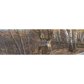 "VantagePoint® - ""Great Eight-Eight Point Buck"" Rear Window Graphic, 66"" x 20"""