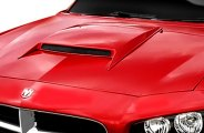 Willpak� - ABS Hood Scoop