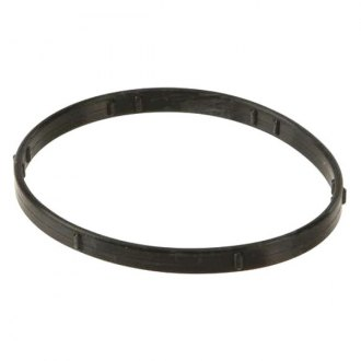Eurospare® - Thermostat Seal
