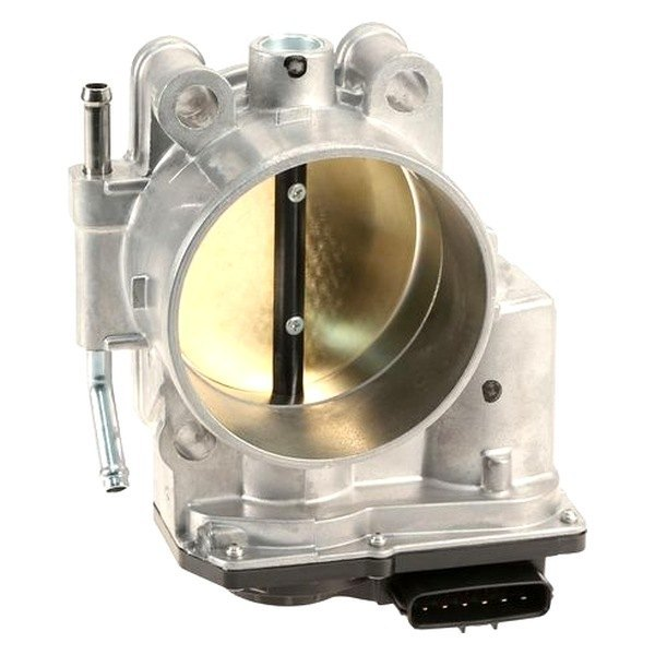 OES Genuine Fuel Injection Throttle Body