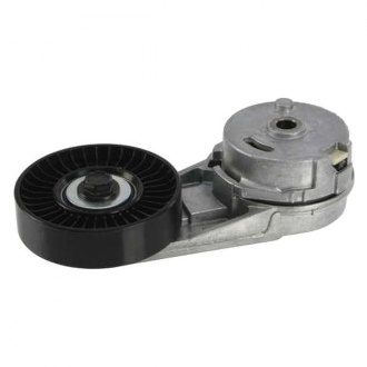 INA® - Acc. Belt Tensioner Assy
