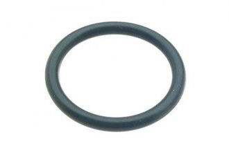 NOK® - Timing Cover O-Ring