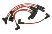 Prestolite® - Ignition Wire Set