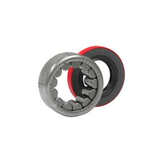 Yukon Gear & Axle® - Rear Axle Bearing Kit